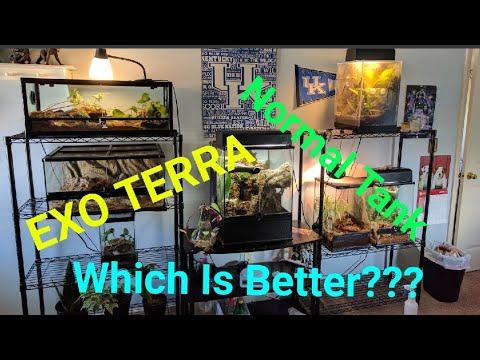 FRONT OPENING TERRARIUM VS TANK (Exo Terra Review)