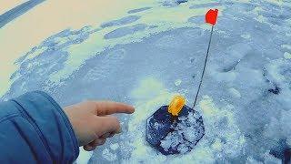 Поставил жерлицы на НОВЫЙ ГОД и не зря Первая рыбалка 2020 Ловля щуки на жерлицы и балансир