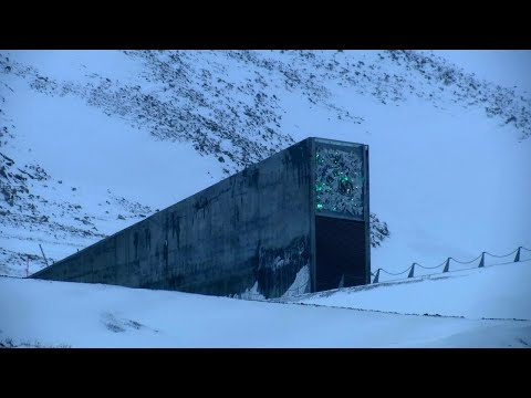 This Arctic Doomsday Bunker Holds The Keys To Survival: Seed