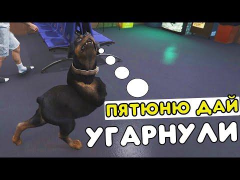 ПЯТЮНЮ ДАЙ! /УГАРНУЛИ!/ - RADMIR RP/GTA 5