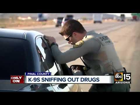Pinal County K-9 unit working to halt drug trade