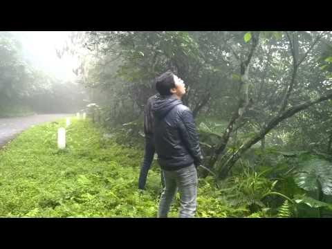 2 thanh niên đái bậy giữa rừng :D