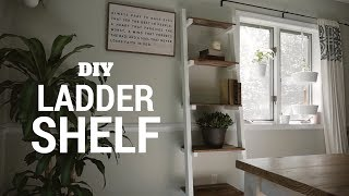 DIY $15 Ladder Shelf