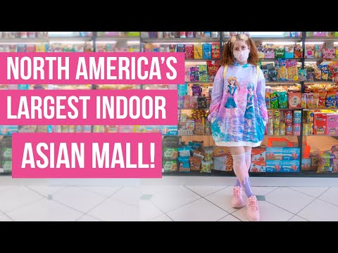 North America's Largest Indoor Asian Mall - Pacific Mall Tour!