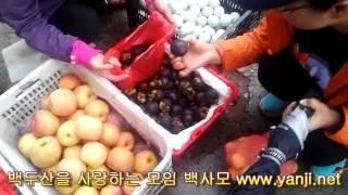 산삼나라의 중국 연변 훈춘 새벽시장 탐험기