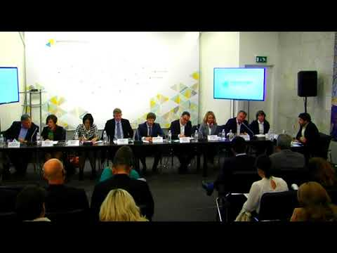 Two months without the NKREKP: What to do with an Energy Sector? UCMC 28.09.2017