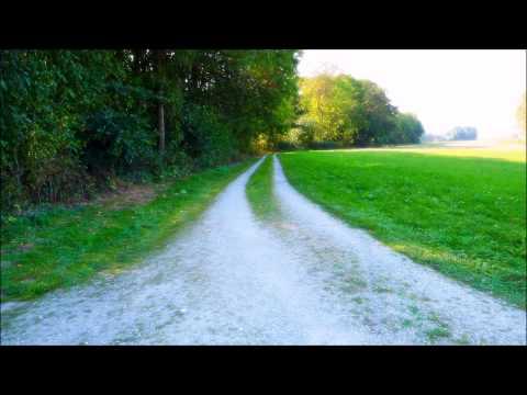 The Specialist - Tal der Tränen (Melancholic Trance Mix)