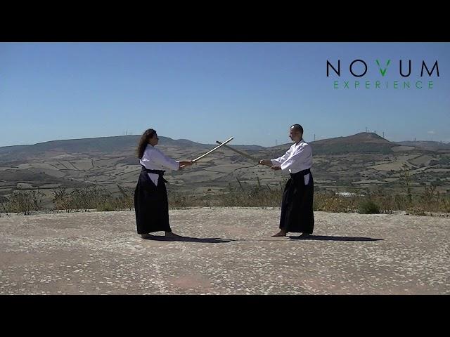 01 Ichi no Tachi - Aikido Novum Experience - Kumitachi - 一 の 太刀 - 组 太 刀 - 合氣道 - 合氣剣