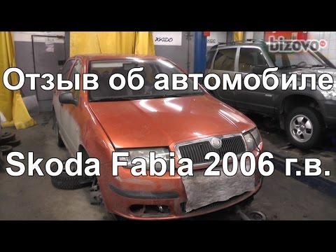 Отзыв о Шкода Фабия (Skoda Fabia) специалиста автосервиса
