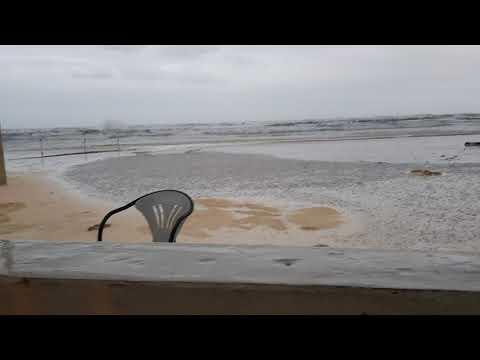 Falconara Mareggiata Novembrina 14 - 11 - 2017