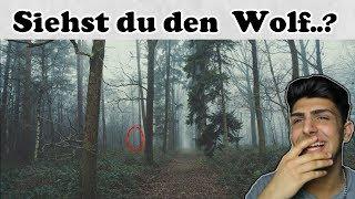 Findest DU den VERSTECKTEN WOLF in DIESEM Bild?? (UNMÖGLICH)