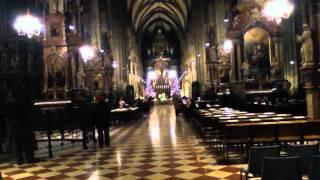 Католическая служба в соборе Святого Стефана в Вене(Католическая служба в соборе Святого Стефана в Вене., 2011-01-21T09:52:03.000Z)