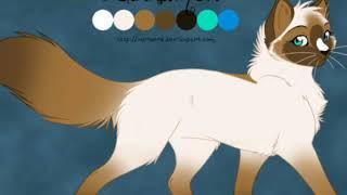 Коты-воители: история Серебрянки(1 часть)