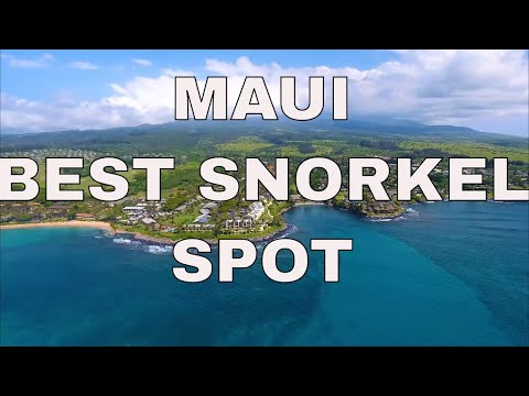 Maui Best Snorkeling From A Hawaii Real Estate Agent