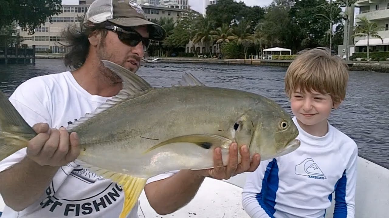 Inshore river jack fishing using live shrimp for bait in for Fishing with live shrimp