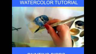 WATERCOLOR TUTORIAL PAINTING A SMALL TIT BIRD