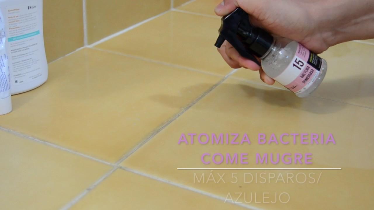 Como Limpiar Baño | 15 Bacteria Come Grasa Como Limpiar Azulejos Del Bano Youtube
