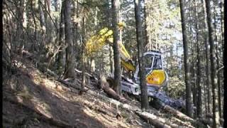 Durchforstung im Steilhang - Thinning works in steep slope Menzi Muck Harvester A91