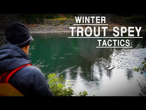 Winter Trout Spey Tactics | Ashland Fly Shop