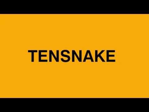 Tensnake - Tazaar Mp3