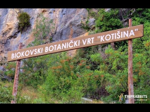 Botanical Garden Makarska Youtube