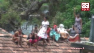 Official to probe issues which led to Welikada female inmate protest