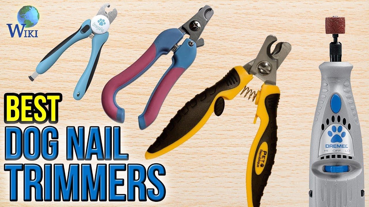 10 Best Dog Nail Trimmers 2017