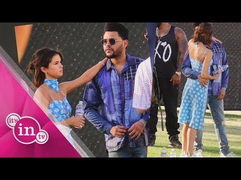 Selena Gomez: DAS ist bei The Weeknd anders!