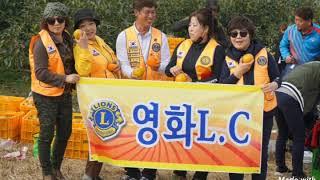 3지역감따기봉사(창원)영화클럽