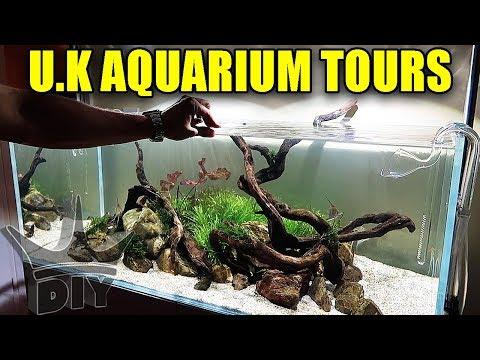 Aquarium tours in the UK