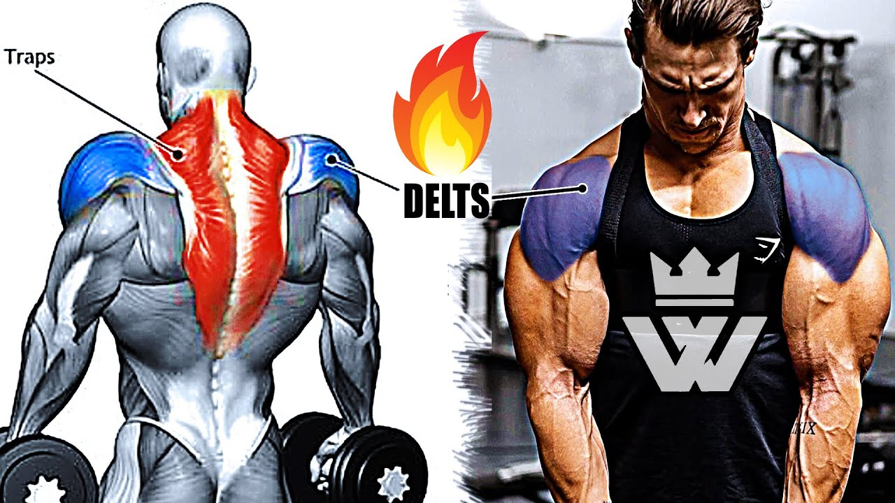 How to Build MASSIVE SHOULDERS | DELTOID Workout