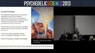 Communicating the Unspeakable: Linguistic Phenomena in the Psychedelic Sphere - Diana Reed Slattery