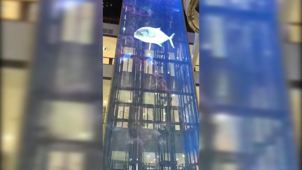 Transparent LED