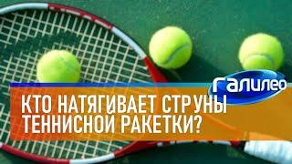 Галилео 🎾 Кто натягивает струны теннисной ракетки?