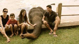 HAMILTON'S ADVENTURES Sri Lanka 2014