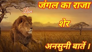 Lions Facts In Hindi !!! Amazing Information About Lions !!!