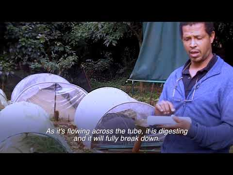 RURAL SOLUTIONS - Biogas in Kenya
