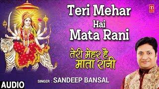 तेरी मेहर है माता रानी Teri Mehar Hai Mata Rani I SANDEEP BANSAL I New Latest Full Audio Song