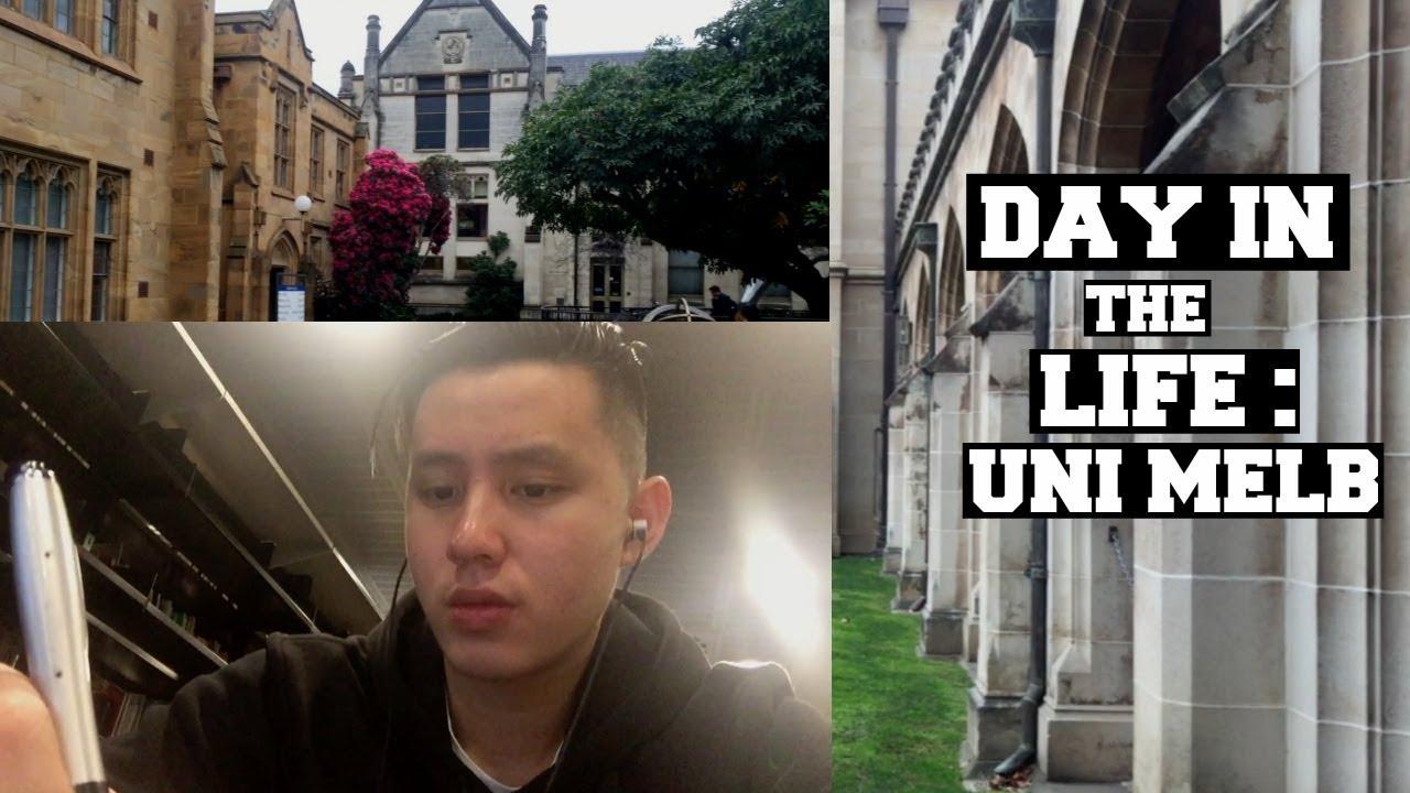 my life in university