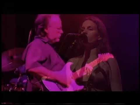 Steely Dan Live at St  Louis 2006 - Full concert