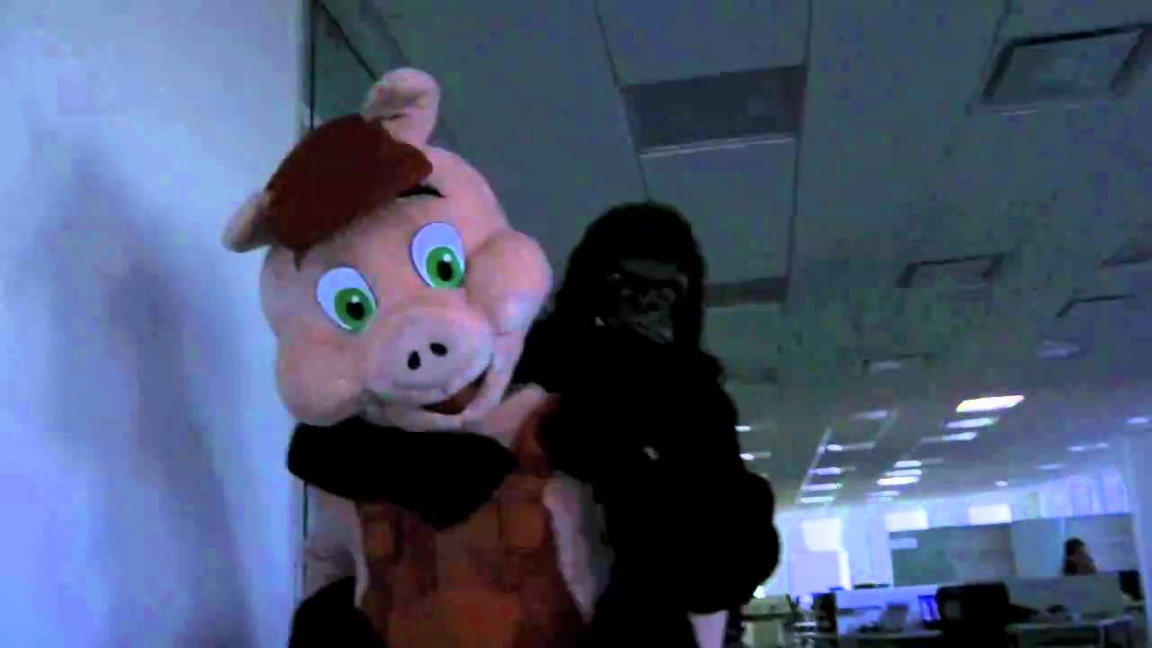 pig at the office ekenasfiber johnhenriksson se u2022 rh ekenasfiber johnhenriksson se