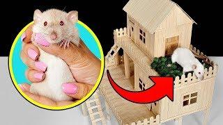 Wie du ein Eisstiel-Haus für deine Ratte baust