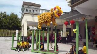 YICK NAM LION DANCE TEAM B - TANJUNG ARU (31JAN 2014)