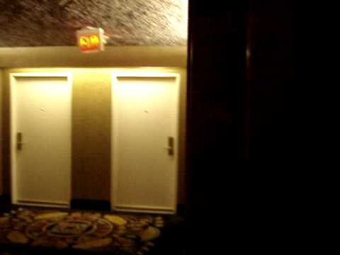 Otis Traction Lobby Elevators At Luxor Hotel Amp In