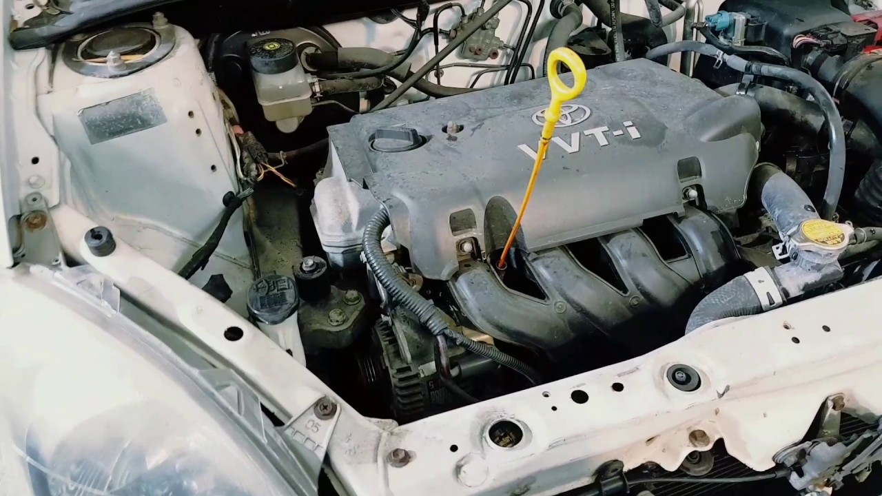 [DIAGRAM_09CH]  2002 Toyota Echo 1.3 litre alternator belt drive belts adjusting alternator  belt squeal bottom bolt - YouTube | 2002 Toyota Echo Engine Diagram |  | YouTube