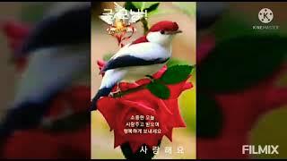 한국 문화예술 연예단체 장애인 소녀소년 청년이웃돕기 총…