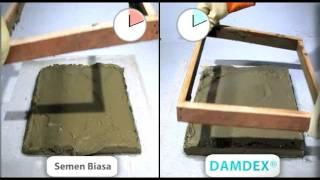 Sifat Istimewa Damdex (short version)