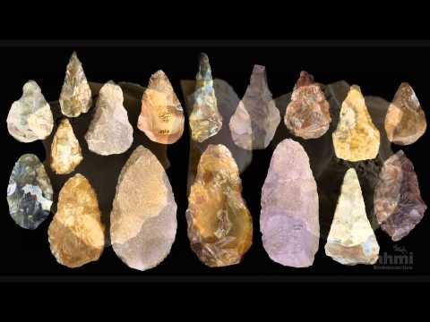 Stone Tool Technology of Our Human Ancestors — HHMI BioInteractive Video