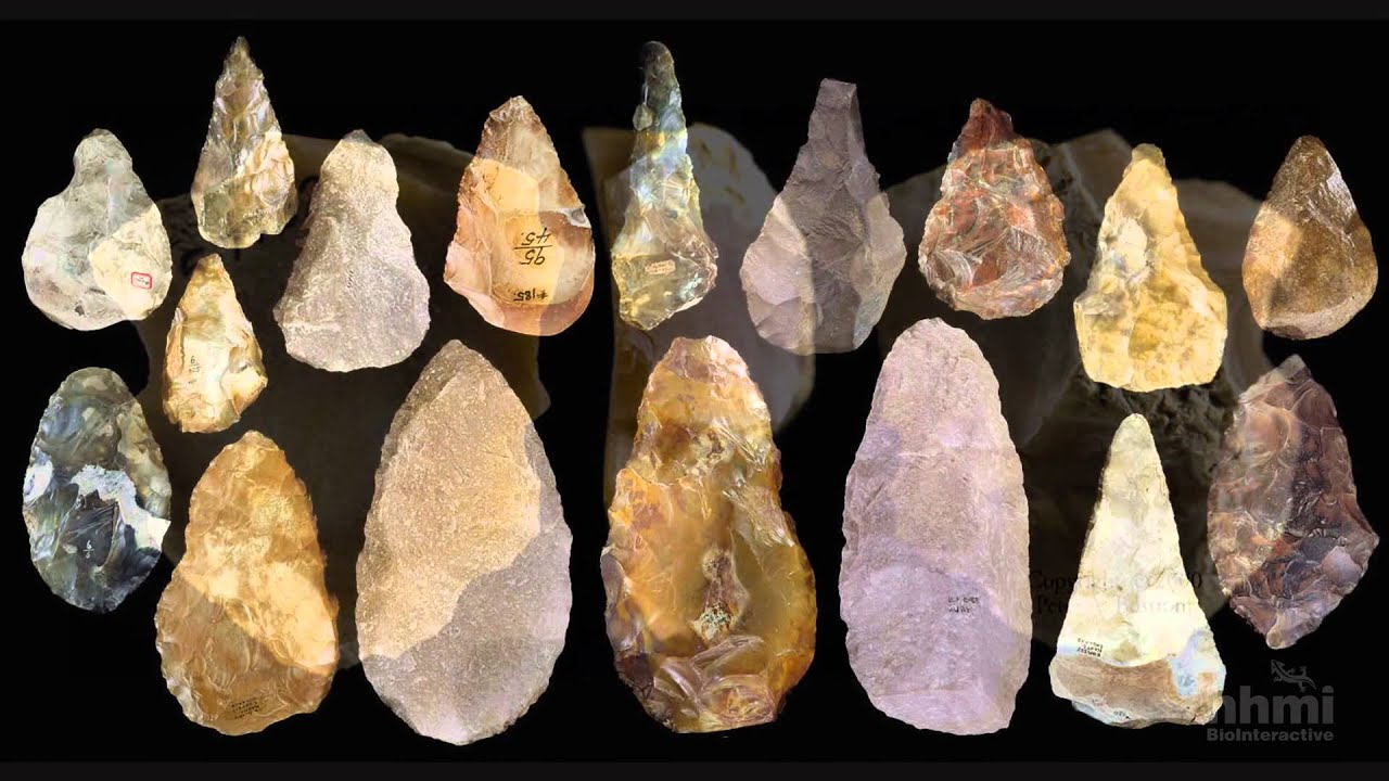 Stone Tool Technology Of Our Human Ancestors