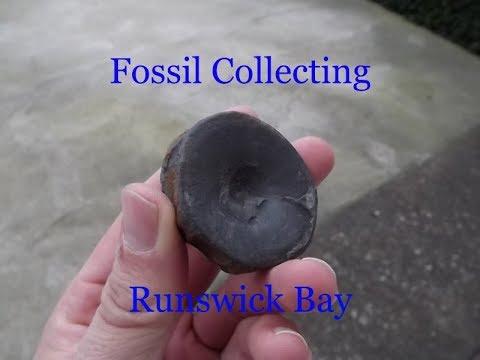 Runswick Bay Fossil Collecting 1 1 2019